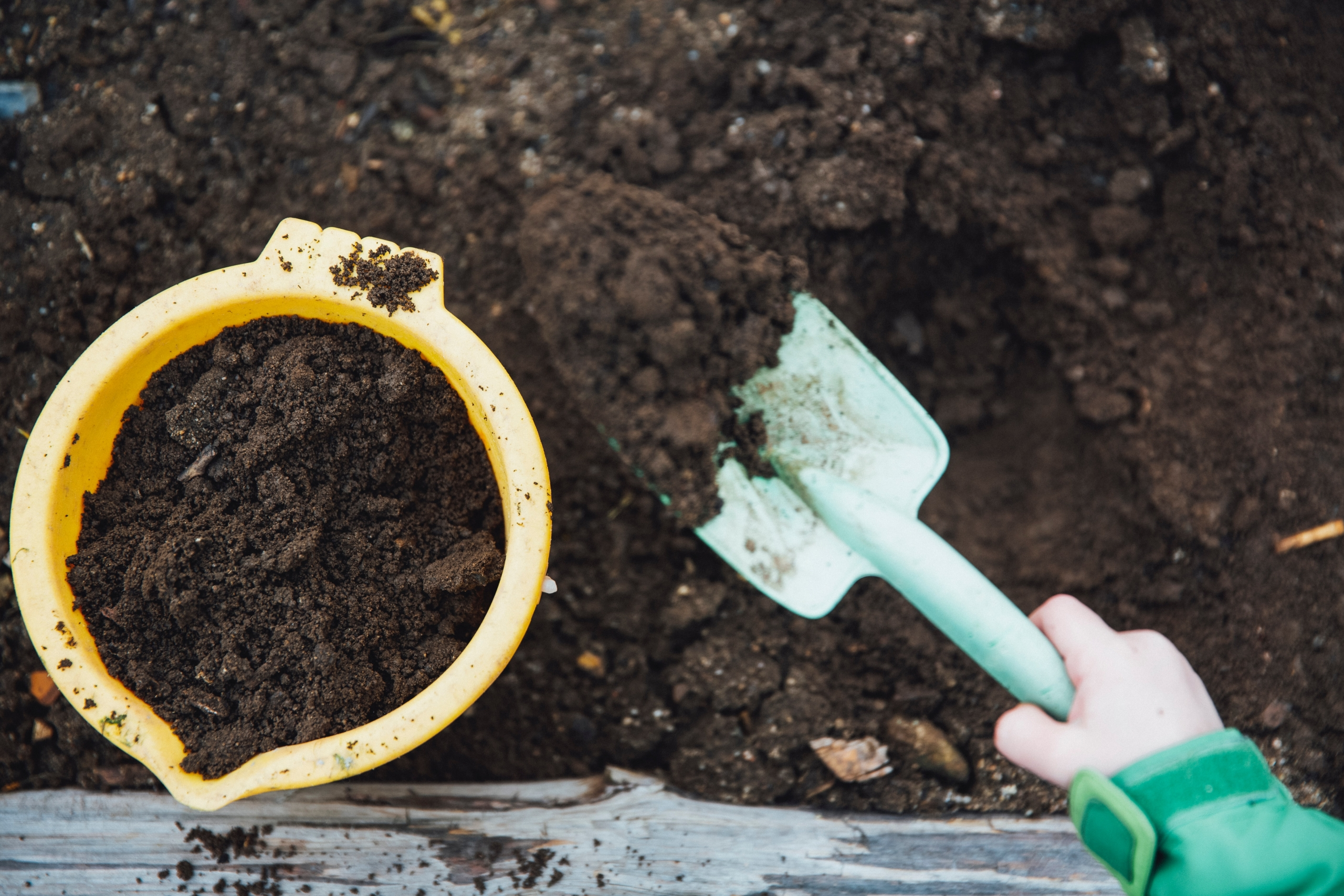 Niño sacando compost